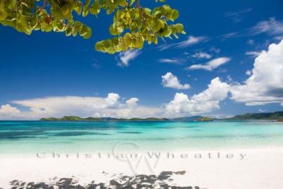 Poster Sapphire Beach, US Virgin Islands
