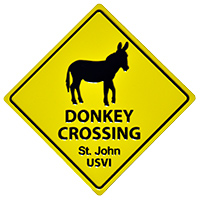 Donkey Crossing Magnet