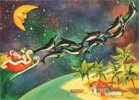 Dolphin Sleigh Christmas Card