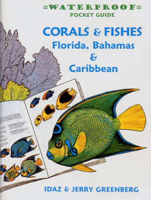 Waterproof Pocket Guide – Corals & Fishes Florida, Bahamas &  Caribbean