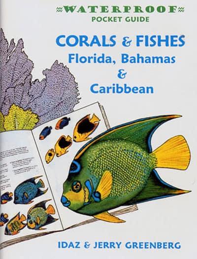 Waterproof Pocket Guide – Corals & Fishes Florida, Bahamas & Caribbean