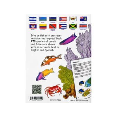 Waterproof Pocket Guide - Corals & Fishes Florida, Bahamas & Caribbean