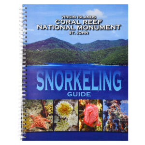 Virgin Islands Coral Reef National Monument St. John Snorkeling Guide
