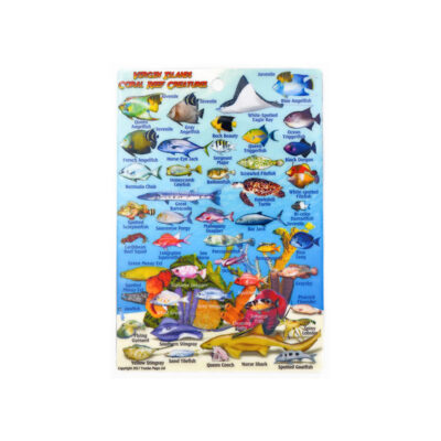 Caribbean Reef Creatures ID Card (Sm/Franko)