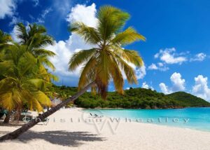 Lindbergh Bay Photo Print